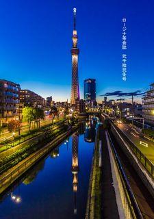 p1_hyoushi_tree_1.jpg